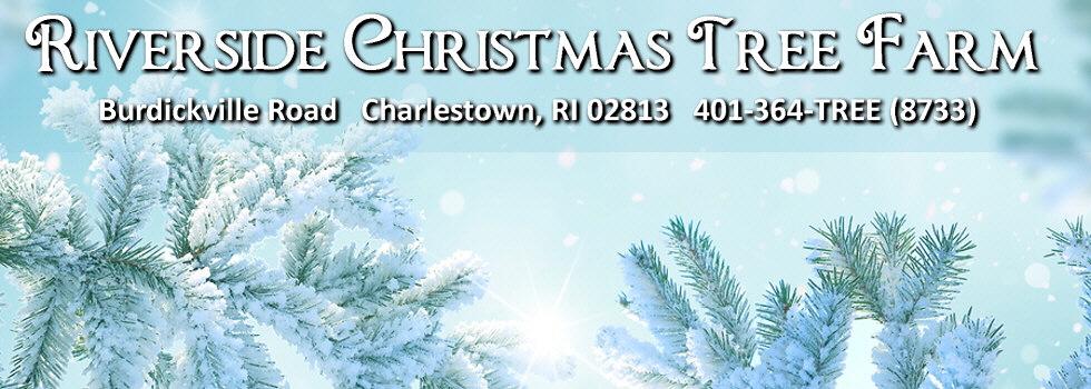 Riverside Christmas Tree Farm | 80 Burdickville Road | Charlestown, RI  02813 | 401-364-8733 - Riverside Christmas Tree Farm 80 Burdickville Road Charlestown